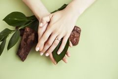 Free Pretty Perfect Woman Hands With White Manicure And Green Leaf On Colorful Background With Wood, Spa Cosmetic Concept Royalty Free Stock Images - 164505679