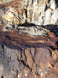 Pretty Petrified. Petrified rock (tree stump) in the badlands of the desert Southwest royalty free stock photos