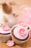 Pretty Pink Cupcakes Stock Image