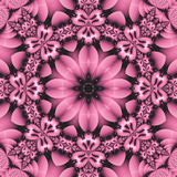 Pretty pink floral mandala Royalty Free Stock Photo