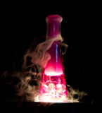 Pretty in Pink Love Potion Stock Photography