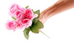 Pretty Pink Roses Stock Photography