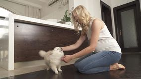 A pretty pregnant blonde is sitting on the floor stroking and playing with her white pomeranian spitz dog. She smiles stock video footage