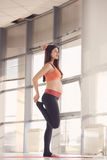 Pretty pregnant woman doing exercise stock photo
