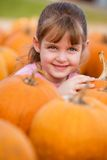 Pretty in the Pumpkin Patch Stock Image