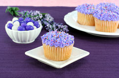 Pretty purple cupcakes and jelly beans for Easter. Pretty cupcakes with sprinkles and purple icing on a table with jelly beans for Easter Royalty Free Stock Photos