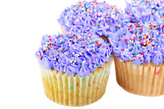 Pretty Purple Cupcakes on white with copy space. Royalty Free Stock Image