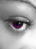 Pretty Purple Eye Royalty Free Stock Images