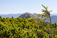Pretty range of mountains, outdoors Royalty Free Stock Image