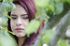 Pretty red hair teen behind green tree leaves Royalty Free Stock Photography