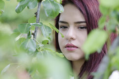Pretty red hair teen behind green tree leaves royalty free stock images