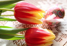 Pretty red and yellow tulips with easter egg Stock Photography