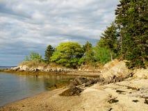 Pretty Rocky Shore on an Island in Coastal Maine. Maine with a pretty rocky beach on an Island in Casco Bay Stock Photo