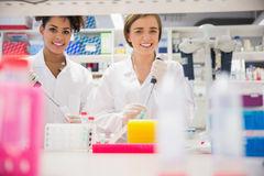Pretty science students using pipette Royalty Free Stock Photo