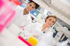 Pretty science students using pipette Stock Images