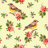 Pretty seamless yellow background with rose flowers and birds Royalty Free Stock Photography