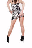 Sexy Girl With Short Skirt Royalty Free Stock Image