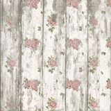 Pretty Shabby Roses on Painted Wood Stock Photography