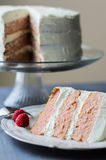 Pretty slice of Cake. Pretty slice of pink strawberry cake stock photo