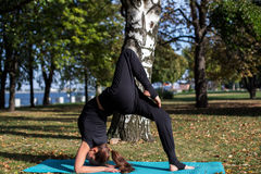 Pretty slim girl does yoga in the park. It should be in the bridge by lifting the leg. Royalty Free Stock Images
