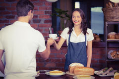 Pretty smiling barista serving a customer. At the coffee shop Royalty Free Stock Images
