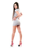 Pretty smiling brunette in gray dress Stock Images