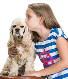 Pretty smiling girl kissing  american spaniel Stock Images