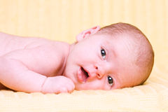 Pretty smiling newborn baby Stock Photo