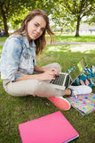 Pretty smiling student sitting on grass using laptop Stock Photos