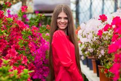 Pretty smiling young women with very long hair in a red blouse Stock Photos