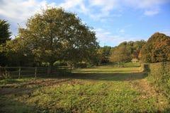 Pretty Somerset farmland view Royalty Free Stock Photo