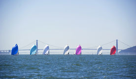 Pretty spinnakers in a row on sailboats Royalty Free Stock Photos