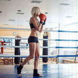 Pretty sport woman with boxing gloves Royalty Free Stock Photo