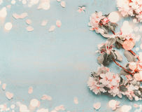 Pretty spring blossom on light blue background with bokeh, top view, pastel color Stock Images