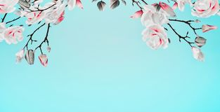 Pretty spring magnolia blossom branches frame at turquoise background, floral border. Springtime concept stock image