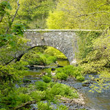 Pretty stone built bridge. Old stone bridge spanning a river and surrounded by green leaved trees in springtime Royalty Free Stock Image