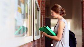 Pretty student checking the noticeboard Royalty Free Stock Photography
