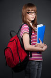 Pretty student with folder Royalty Free Stock Image