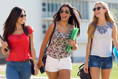 Pretty student girls having fun at the campus Stock Photos