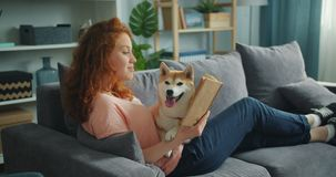 Pretty student reading book in apartment smiling and petting adorable dog. Pretty student young woman is reading book in cozy apartment smiling and petting stock footage