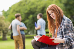 Pretty student studying outside on campus Royalty Free Stock Photography