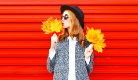 Pretty stylish autumn pretty woman with yellow maple leaves Stock Photo