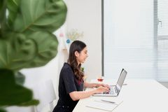 Pretty stylish woman working from home on laptop.  Royalty Free Stock Photography
