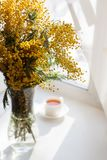 Pretty sunny morning tea and flowers. Morning summer or spring concept. Pretty sunny morning tea and flowers. Morning summer or spring concept Royalty Free Stock Photos