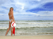 Pretty Tanned Woman Smiling on the Beach in a Biki Stock Image