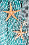 Pretty turquoise blue nautical background. With woven diamond pattern fishing net adorned with dried starfish hanging on textured painted wooden boards Stock Photography