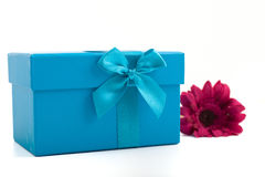 Pretty turquoise gift box with a Gerbera daisy Stock Photography