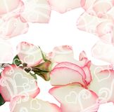 Pretty valentines design with rose Stock Photography