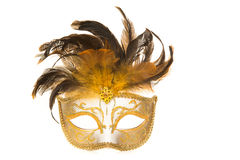 Pretty venetian golden carnival mask with feathers Royalty Free Stock Image