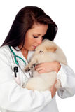 Pretty vet with a beautiful dog Royalty Free Stock Image